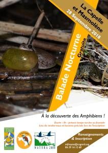 Balade Nocturne Gratuite pour petits et grands (inscription obligatoire) à la découverte des crapauds, grenouilles et tritons de La Capelle et Masmolène. @ La Capelle-et-Masmolène | Occitanie | France