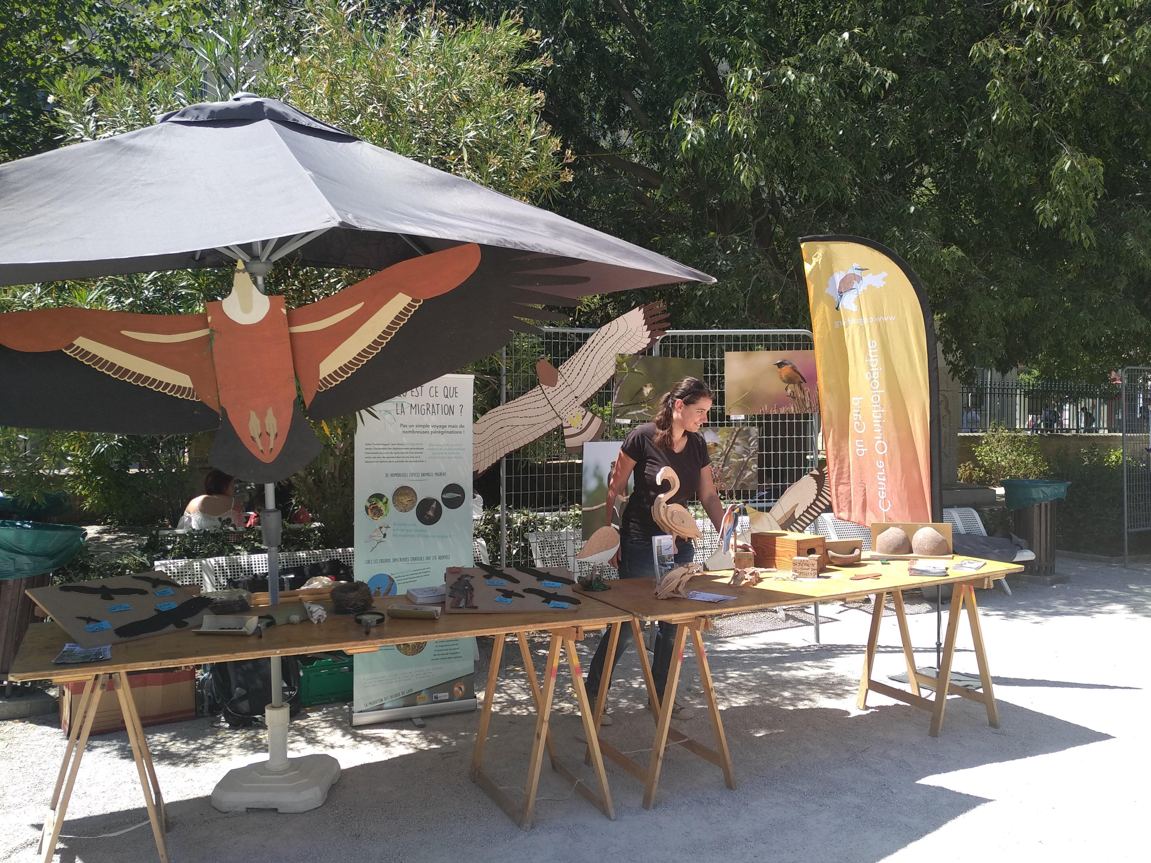 20190607_Avignon village biodiv (2)