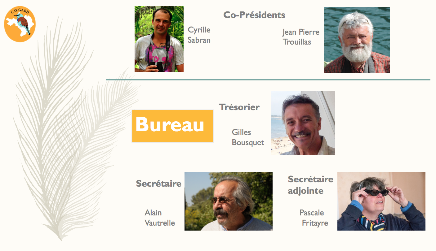Capture d'écran 2017-05-25 à 21.13.58