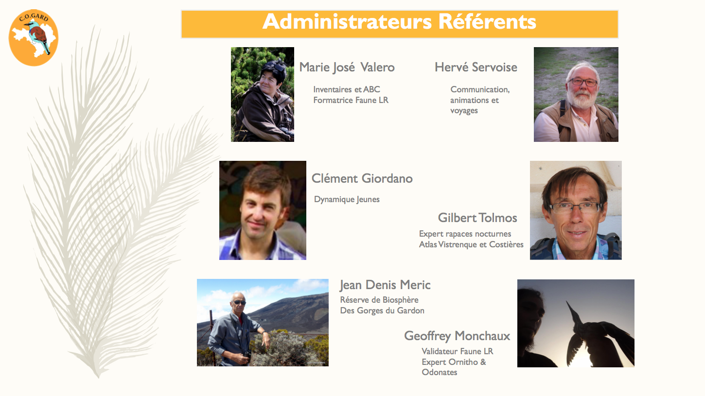 Capture d'écran 2017-06-18 à 18.58.58