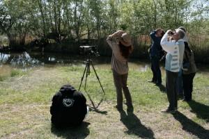 La biodiversité de La Capelle @ Etang de La Capelle | La Capelle-et-Masmolène | Occitanie | France