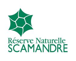 RNR Scamandre
