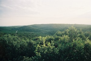 Vue Sud Zone depuis les Ombrens (DBi)