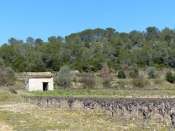 Mazet_a_La_Roque-sur-Ceze_dbi-1