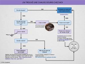 arbre_de_decision_appel_sos_pna(1)_pages-to-jpg-0001