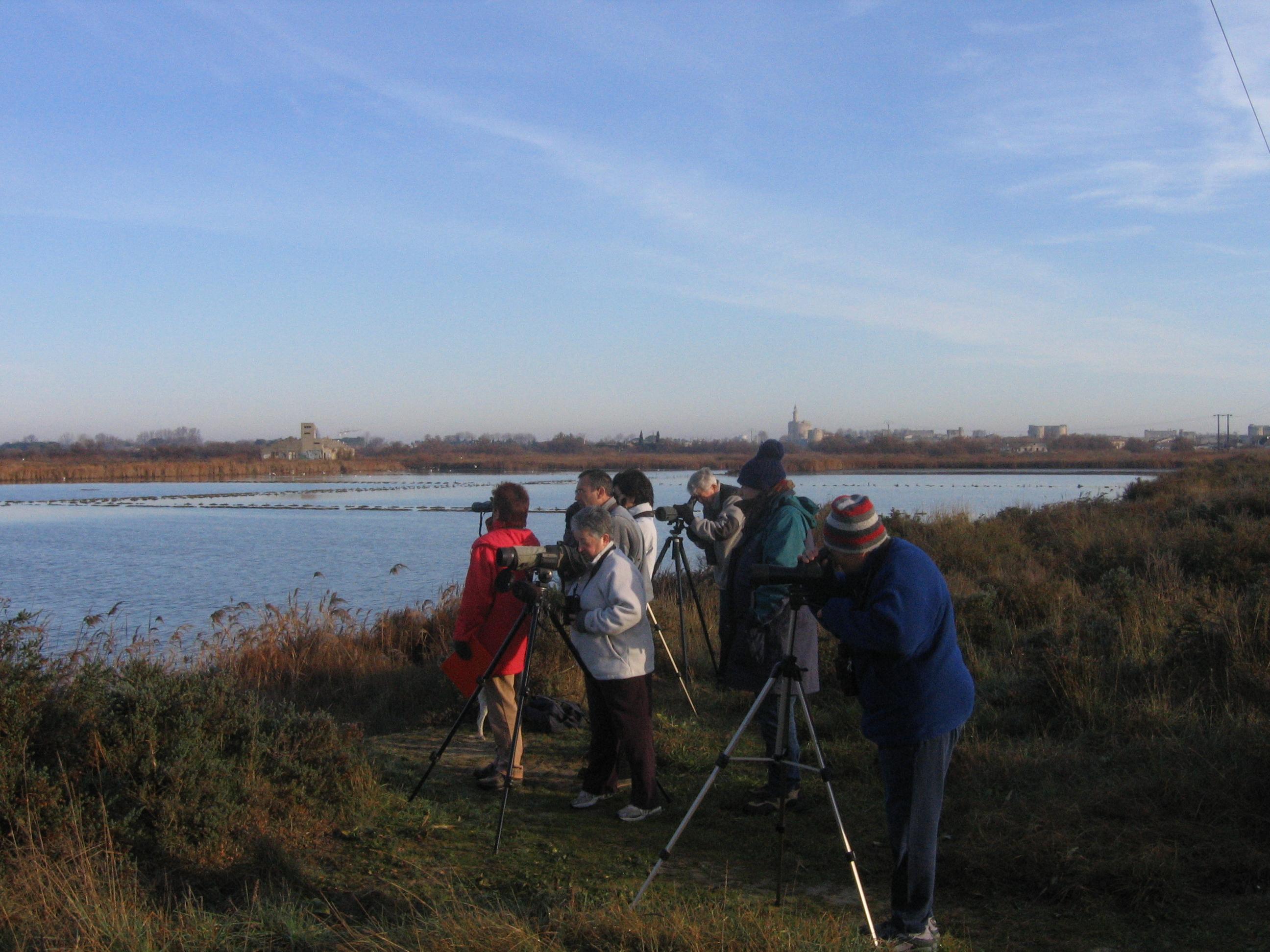 Enquêtes_wetlands