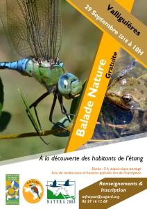 2018_29 Sept Libellule_Valliguiere-page-001