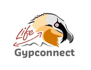 GypCo