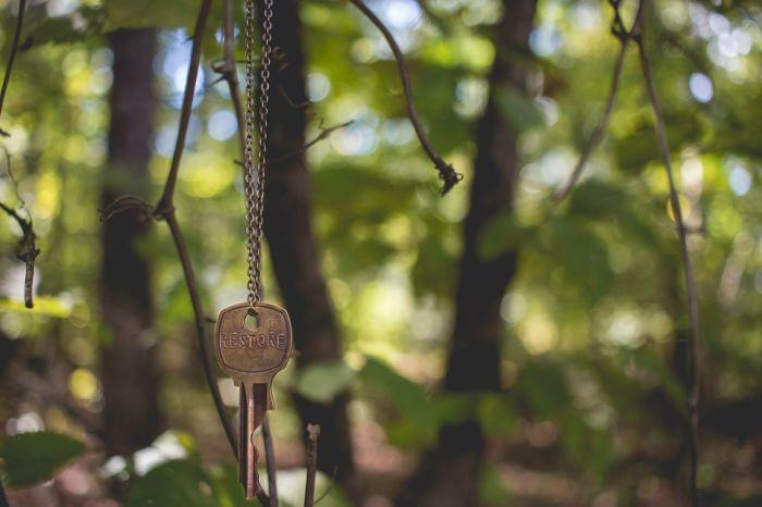 En quête du Vistre @ Vauvert - Parc des Aigrettes